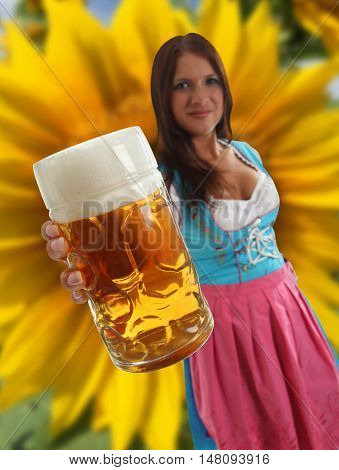 Concept Bavarian Woman in traditional dirndl clothing holding Oktoberfest Beer with a big sunflower in the background