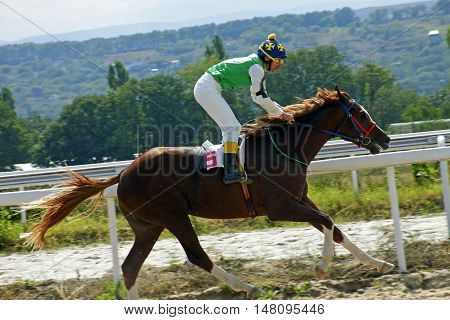 Horse race for the traditional prize Northern Caucasusi in Pyatigorsk,the largest in Russia.