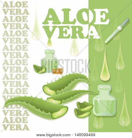 Vector illustration with pieces of aloe vera with vial  isolated on white background. Aloe Vera leaves and slices with pipette and drops.