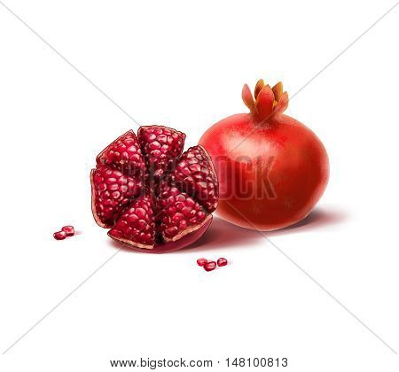 Pomegranate with seeds on white background. Rosh Hashana Jewish New Year symbol. Watercolor illustration. Pomegranate fruit card. Pomegranate tree, pomegranate juice, fruit. Shana Tova. Pomegranate, Shofar, Yom Kippur, Sukkot, Jewish new year, Jewish holi