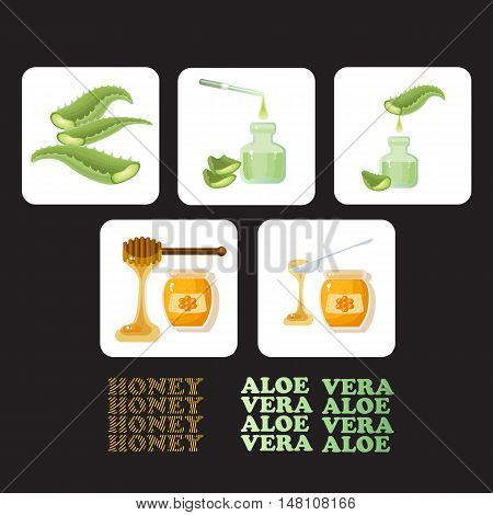 Vector set icons with pieces of aloe vera, glass jar full of honey and wooden stick. Aloe Vera leaves and slices with pipette and drops. Natural delicious healthy nutrition golden honey.