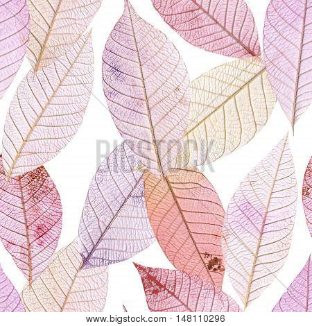 A seamless background pattern of purple tinted skeleton leaves on white background, autumnal repeat print