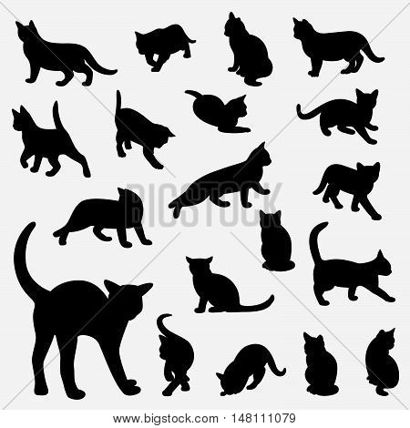 Set of cats Silhouettes on a white background.