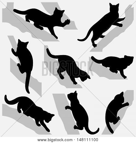 Set of cats on a trees. Silhouettes on a white background.