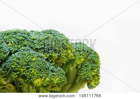 Close Up On Fresh Broccoli Solated On A White Background