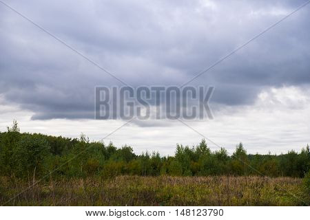 Gray clouds in the sky. Tundra. Forest, field.