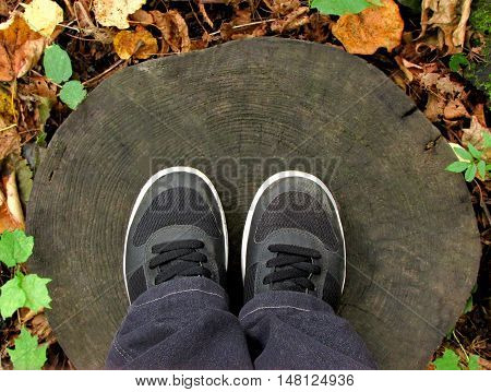 Legs clad in trousers and shod in black boots standing on the old round the tree stump among autumn leaves.