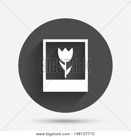 Macro photo frame sign icon. Flower photography symbol. Circle flat button with shadow. Vector