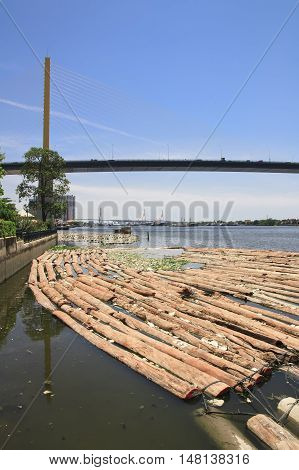 waste & log plentifully on river from the deforestation
