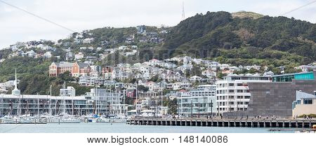The panoramic view of Mount Victoria and Wellington's residential district (New Zealand).