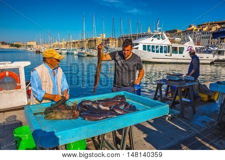 MARSEILLE, FRANCE - MAY 23, 2015: The morning fish market in the old port of Marseilles. Fishermen laid fresh catch on the counter