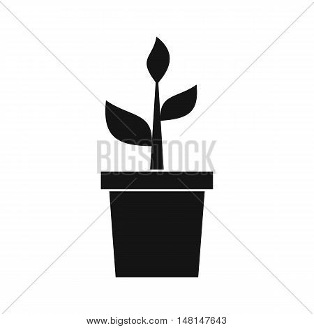 Plant in clay pot icon in simple style isolated on white background. Gardening symbol vector illustration
