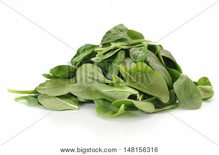 Baby spinach studio isolated on white background