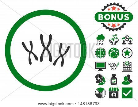 Chromosomes icon with bonus pictogram. Vector illustration style is flat iconic bicolor symbols, green and gray colors, white background.