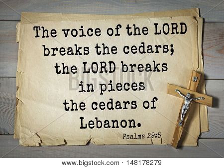 TOP-1000.  Bible verses from Psalms. The voice of the LORD breaks the cedars; the LORD breaks in pieces the cedars of Lebanon.