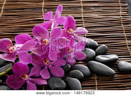 Branch pink orchid and zen stones, on bamboo mat