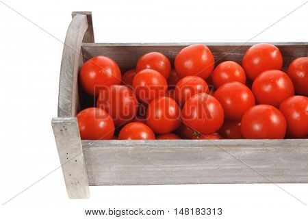 fresh red raw tomatoes in antique grey retro design box isolated over white background