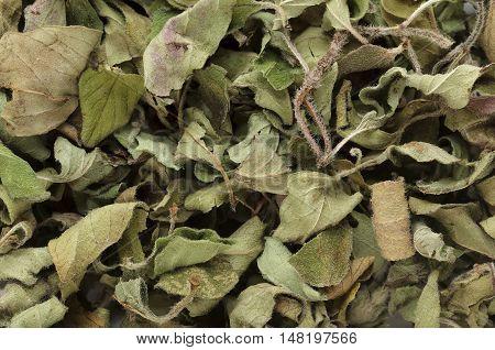 Organic dry Oregano leaves (Origanum vulgare). Macro close up background texture. Top view.