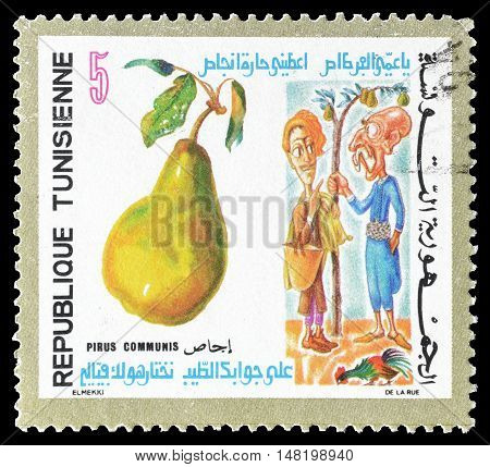 TUNISIA - CIRCA 1971 : Cancelled postage stamp printed by Tunisia, that shows Pear and two man.