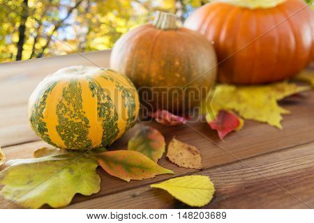 harvest, season and autumn concept - close up of pumpkins and leaves on wooden table over natural background