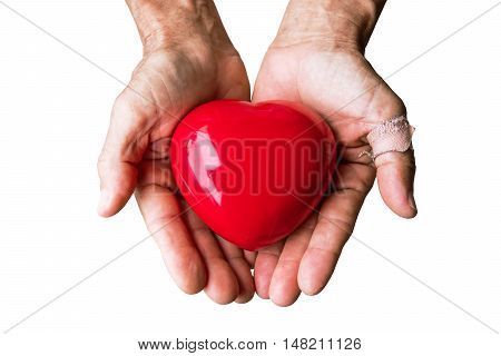 Elderly hand with wound carrying red heart, isolated on white background