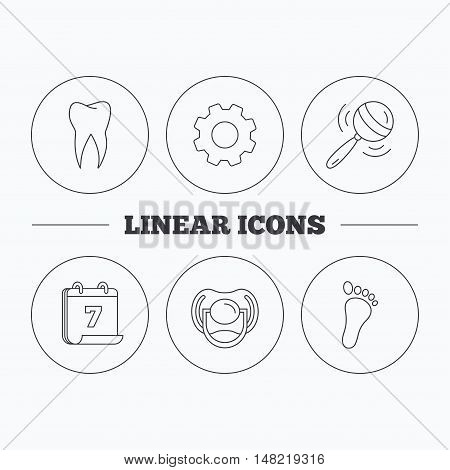 Pacifier, footprint and dental tooth icons. Rattle toy linear sign. Flat cogwheel and calendar symbols. Linear icons in circle buttons. Vector