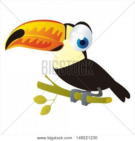vector cartoon cute animal mascot. Funny colorful cool illustration of happy Toucan bird