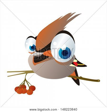 vector cartoon cute animal mascot. Funny colorful cool illustration of happy Waxwing bird