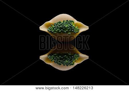 Green broccoli embedded into shell pasta on a black reflection backround