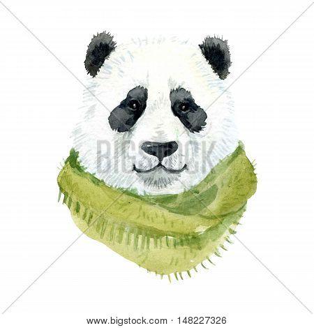 Beautiful watercolor Panda bear wearing a green scarf