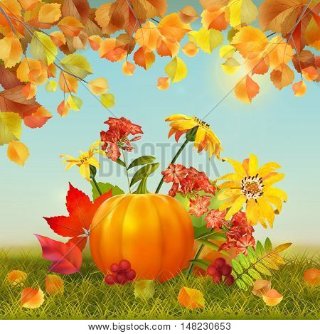 Autumn vector Thanksgiving Card with harvest, pumpkin, flowers, grass, fallen leaves, tree branches