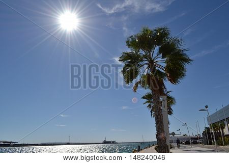 Vistas desde el puerto deportivo de Alicante