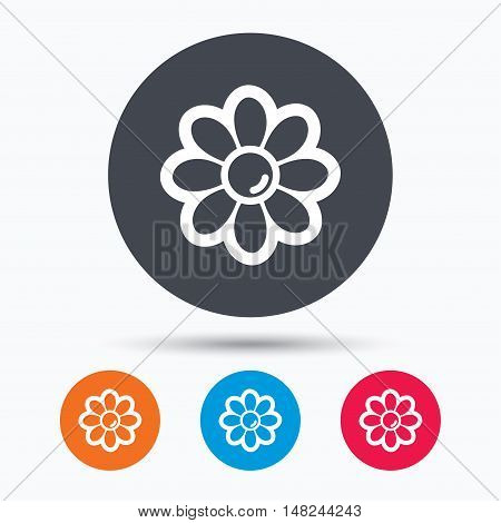 Flower icon. Florist plant with petals symbol. Colored circle buttons with flat web icon. Vector