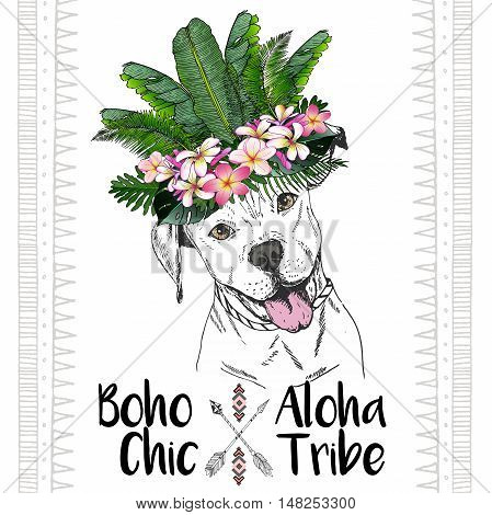 Vector close up portrait of pitbull dog wearing the exotic flower crown. Hand drawn domestic dog illustration. Tropical Hawaiian boho chic decoration with palm leaves and flowers. Aloha tribe