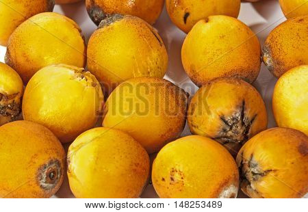 Extreme Close Up Of  Natural Ripe Orange Palm Dates