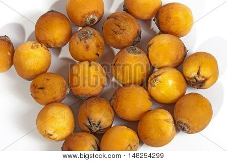 Collection Of Natural Ripe Orange Palm Dates