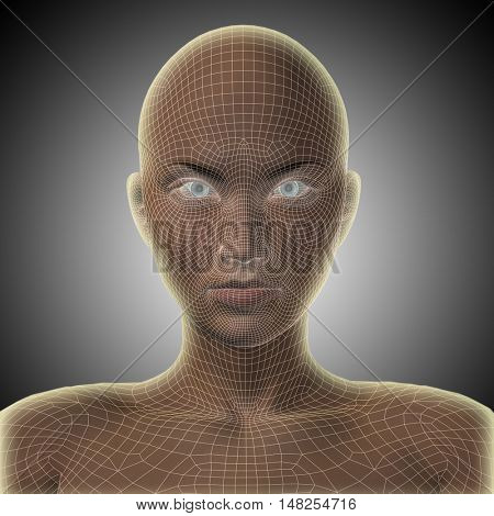 Concept or conceptual 3D illustration wireframe young human female or woman face or head glowing on gray background