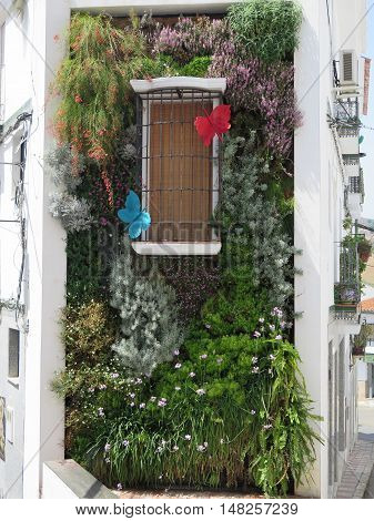 Building wall with fake window and Vertical Garden in Alora Andalusia decorated with large butterflies
