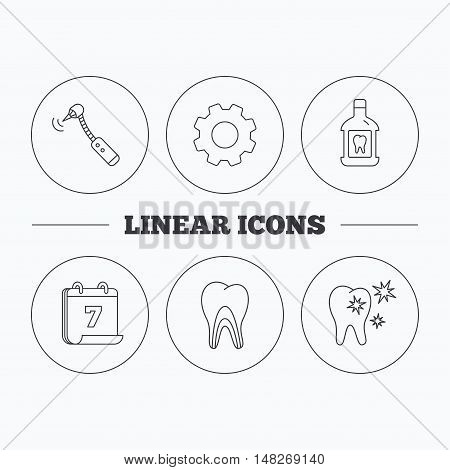 Tooth, mouthwash and dentinal tubules icons. Healthy teeth, dentinal tubules linear sign. Flat cogwheel and calendar symbols. Linear icons in circle buttons. Vector