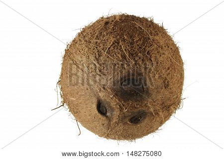 Whole Coconut with Husk on White Background