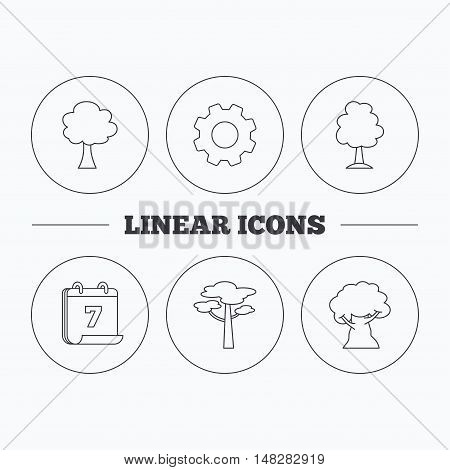 Pine tree, oak-tree icons. Forest trees linear signs. Flat cogwheel and calendar symbols. Linear icons in circle buttons. Vector