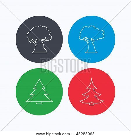 Tree, oak-tree and christmas tree icons. Forest trees linear signs. Linear icons on colored buttons. Flat web symbols. Vector