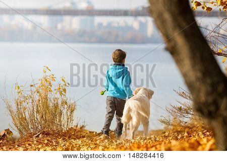 Little boy playing with a golden retriever in autumn park