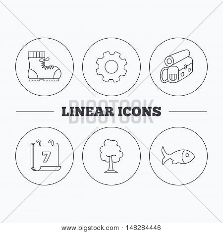 Maple tree, fish and hiking boots. Backpack linear sign. Flat cogwheel and calendar symbols. Linear icons in circle buttons. Vector