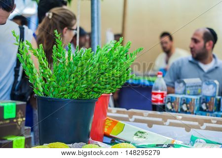 JERUSALEM, ISRAEL - OCTOBER 8, 2014: Religious Jews are buying products for the holiday. Traditional holiday market in Jerusalem. Sukkot in Israel