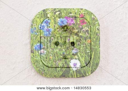 Conceptual: Flowers over Power Outlet With Path