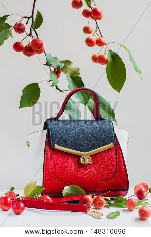 Beautiful bright bag and belt close, light gray background in the decoration of apples, vertical
