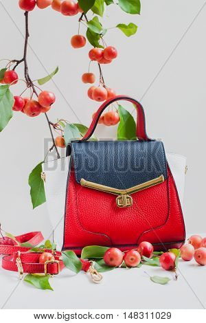 Modern urban female bag of colorful skin close-up, light background with a branch of red apples, vertical