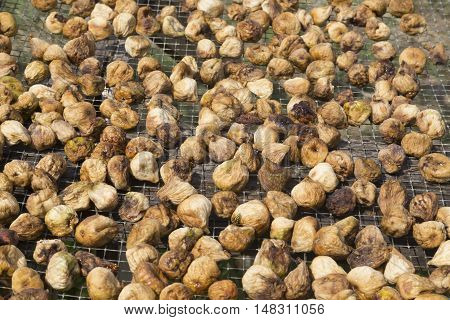 Dried figs on an small iron grating drying