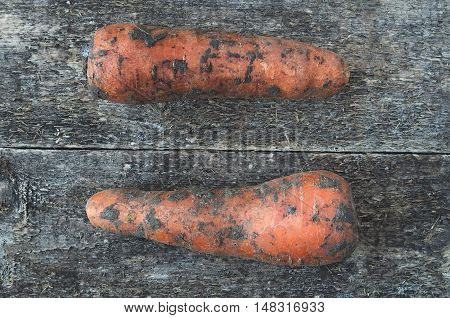 Dirty Carrot